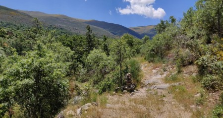 Camino entre El Horcao y el Lomo de Allá